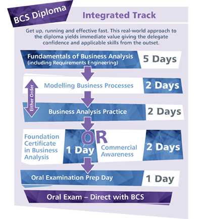 Business Analysis Integrated Track